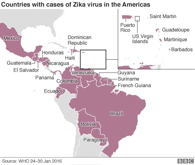 Zika Virus The John W Hock Company